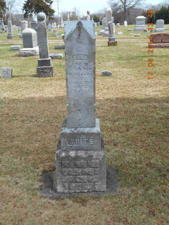 WHITE, FAMILY - Calhoun County, Michigan   FAMILY WHITE - Michigan Gravestone Photos