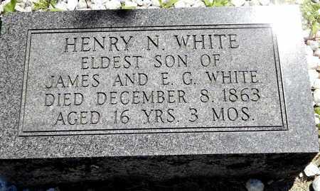 WHITE, HENRY N - Calhoun County, Michigan | HENRY N WHITE - Michigan Gravestone Photos