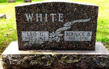 WHITE, LEO G - Calhoun County, Michigan | LEO G WHITE - Michigan Gravestone Photos