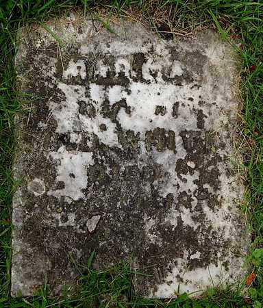 WHITE, MARY A - Calhoun County, Michigan   MARY A WHITE - Michigan Gravestone Photos