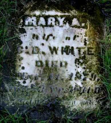 WHITE, MARY A - Calhoun County, Michigan | MARY A WHITE - Michigan Gravestone Photos