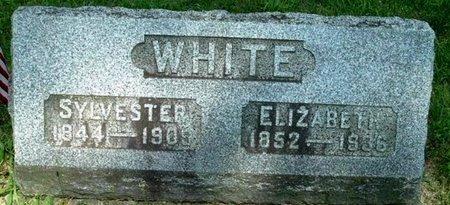 WHITE, ELIZABETH - Calhoun County, Michigan   ELIZABETH WHITE - Michigan Gravestone Photos