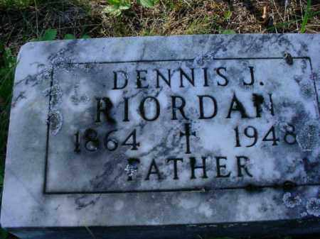 RIORDAN, DENNIS J. - Chippewa County, Michigan | DENNIS J. RIORDAN - Michigan Gravestone Photos