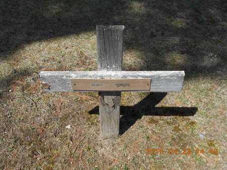 JOHNSON, DORIS - Delta County, Michigan | DORIS JOHNSON - Michigan Gravestone Photos