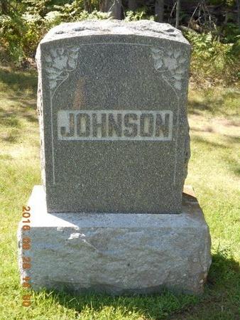 JOHNSON, FAMILY - Delta County, Michigan | FAMILY JOHNSON - Michigan Gravestone Photos