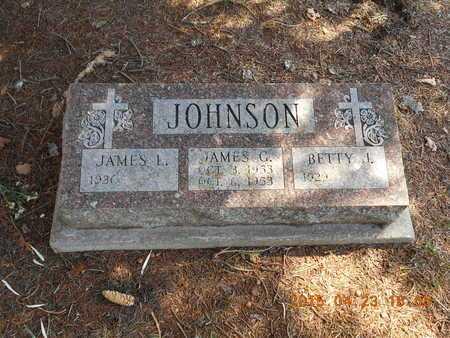 JOHNSON, JAMES L. - Delta County, Michigan | JAMES L. JOHNSON - Michigan Gravestone Photos