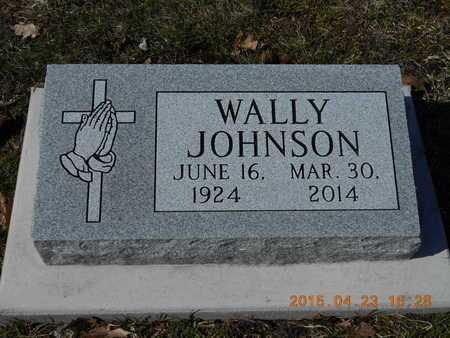 JOHNSON, WALLY - Delta County, Michigan | WALLY JOHNSON - Michigan Gravestone Photos