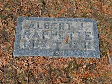 RAPPETTE, ALBERT J. - Delta County, Michigan | ALBERT J. RAPPETTE - Michigan Gravestone Photos