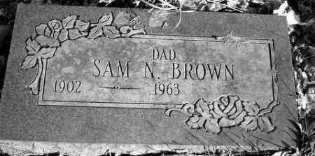 BROWN, SAM N. - Grand Traverse County, Michigan   SAM N. BROWN - Michigan Gravestone Photos