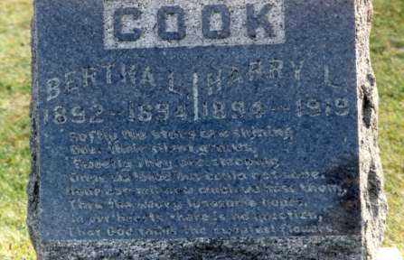 COOK, BERTHA - Grand Traverse County, Michigan | BERTHA COOK - Michigan Gravestone Photos
