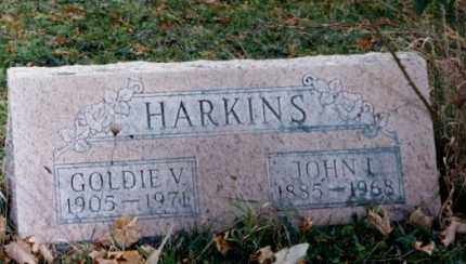 DIXON HARKINS, GOLDIE V. - Grand Traverse County, Michigan | GOLDIE V. DIXON HARKINS - Michigan Gravestone Photos