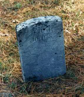 JONES, SARAH - Grand Traverse County, Michigan | SARAH JONES - Michigan Gravestone Photos