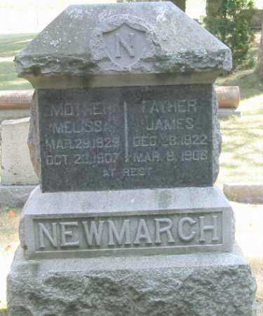NEWMARCH, JAMES - Grand Traverse County, Michigan | JAMES NEWMARCH - Michigan Gravestone Photos