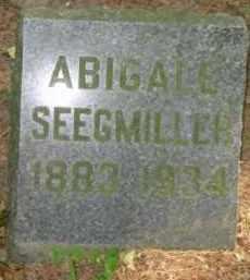 SEEGMILLER, ABIGAIL - Grand Traverse County, Michigan | ABIGAIL SEEGMILLER - Michigan Gravestone Photos
