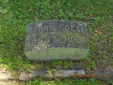 DEAL, CARRIE A. - Hillsdale County, Michigan | CARRIE A. DEAL - Michigan Gravestone Photos