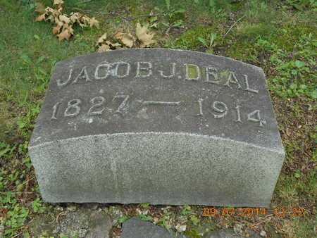 DEAL, JACOB J. - Hillsdale County, Michigan | JACOB J. DEAL - Michigan Gravestone Photos
