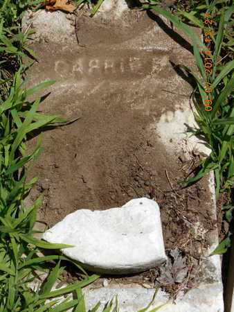 EDDY, CARRIE E. - Hillsdale County, Michigan | CARRIE E. EDDY - Michigan Gravestone Photos