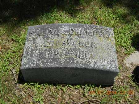 CHAMPLIN GROSVENOR, SALLY A. - Hillsdale County, Michigan | SALLY A. CHAMPLIN GROSVENOR - Michigan Gravestone Photos