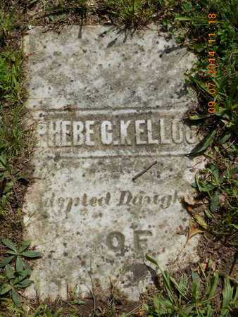KELLOGG, PHEBE C. - Hillsdale County, Michigan | PHEBE C. KELLOGG - Michigan Gravestone Photos