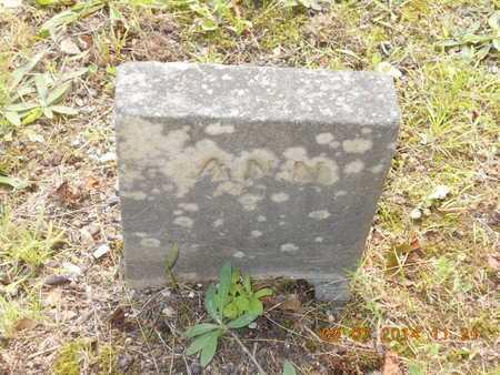PRICE, ANN - Hillsdale County, Michigan   ANN PRICE - Michigan Gravestone Photos