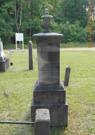 PRICE, FAMILY - Hillsdale County, Michigan | FAMILY PRICE - Michigan Gravestone Photos