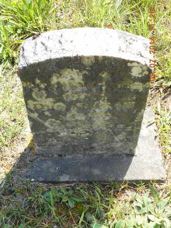RAINEY, INFANT SON - Hillsdale County, Michigan | INFANT SON RAINEY - Michigan Gravestone Photos
