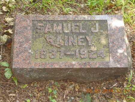 RAINEY, SAMUEL J. - Hillsdale County, Michigan | SAMUEL J. RAINEY - Michigan Gravestone Photos
