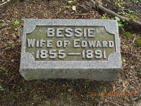 SCHAUPPNER, BESSIE - Hillsdale County, Michigan | BESSIE SCHAUPPNER - Michigan Gravestone Photos