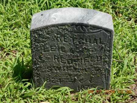 REDFIELD SWIFT, RETCHAL LEILA - Hillsdale County, Michigan | RETCHAL LEILA REDFIELD SWIFT - Michigan Gravestone Photos