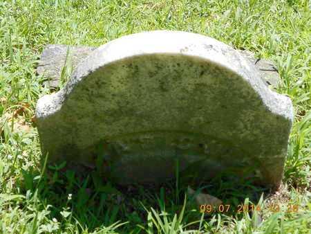 SWIFT, UNKNOWN - Hillsdale County, Michigan | UNKNOWN SWIFT - Michigan Gravestone Photos