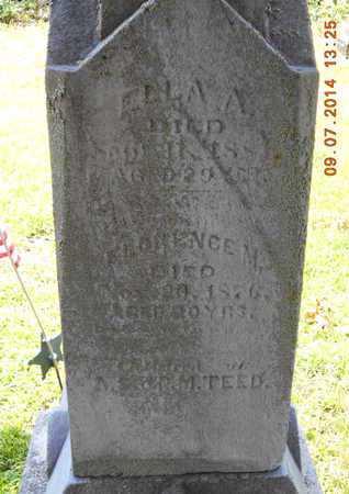 TEED, ELLA A. - Hillsdale County, Michigan   ELLA A. TEED - Michigan Gravestone Photos