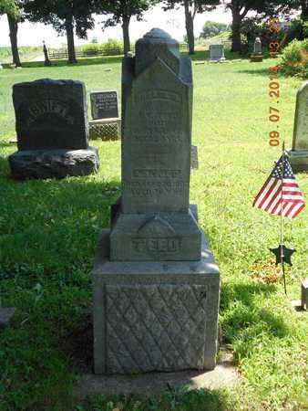 TEED, FAMILY - Hillsdale County, Michigan | FAMILY TEED - Michigan Gravestone Photos