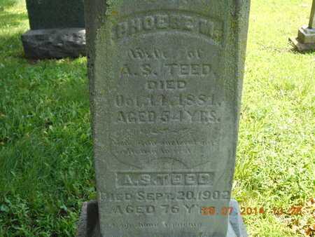 TEED, ALANSON S. - Hillsdale County, Michigan   ALANSON S. TEED - Michigan Gravestone Photos