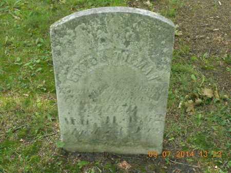 TREMAN, SITTON - Hillsdale County, Michigan | SITTON TREMAN - Michigan Gravestone Photos