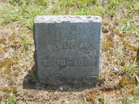 SMITH TYLER, DOTHA - Hillsdale County, Michigan | DOTHA SMITH TYLER - Michigan Gravestone Photos