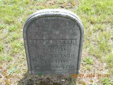 TYLER, JACOB - Hillsdale County, Michigan | JACOB TYLER - Michigan Gravestone Photos