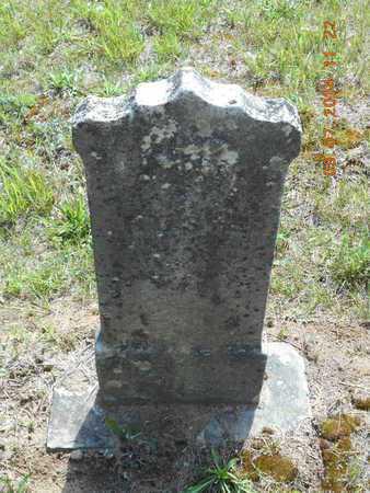 TYLER, ROSIE - Hillsdale County, Michigan | ROSIE TYLER - Michigan Gravestone Photos