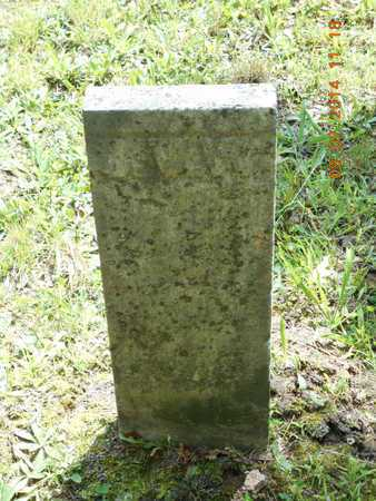 VAN WEY, JONAS - Hillsdale County, Michigan   JONAS VAN WEY - Michigan Gravestone Photos