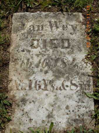 VAN WEY, JONAS - Hillsdale County, Michigan | JONAS VAN WEY - Michigan Gravestone Photos