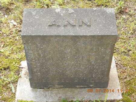 WELLS, ANN - Hillsdale County, Michigan | ANN WELLS - Michigan Gravestone Photos
