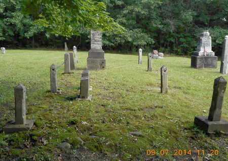 WELLS, FAMILY - Hillsdale County, Michigan | FAMILY WELLS - Michigan Gravestone Photos