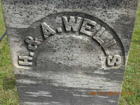 WELLS, ANN - Hillsdale County, Michigan | ANN WELLS - Michigan Gravestone Photos