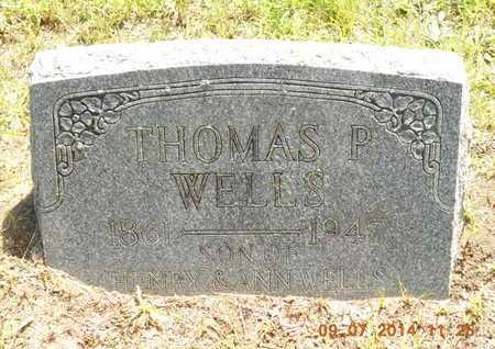 WELLS, THOMAS P. - Hillsdale County, Michigan | THOMAS P. WELLS - Michigan Gravestone Photos