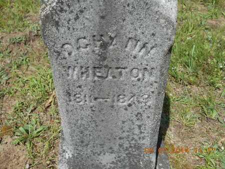 WHEATON, OCHANN - Hillsdale County, Michigan | OCHANN WHEATON - Michigan Gravestone Photos