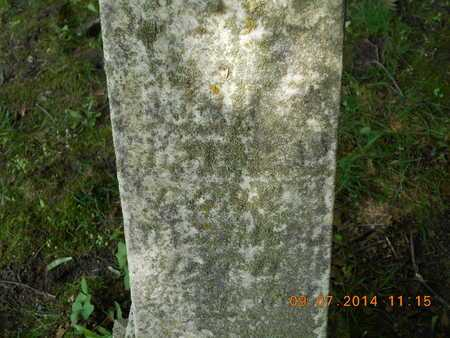 WHITEHEAD, JOHN M. - Hillsdale County, Michigan | JOHN M. WHITEHEAD - Michigan Gravestone Photos