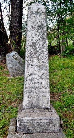 GREER, ELLA - Kalamazoo County, Michigan | ELLA GREER - Michigan Gravestone Photos
