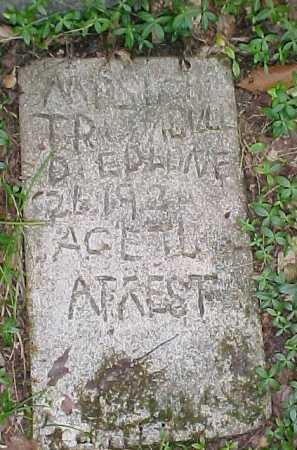 TRUMBULL,  - Leelanau County, Michigan    TRUMBULL - Michigan Gravestone Photos