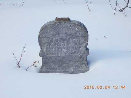 BURDICK, MARY M. - Marquette County, Michigan | MARY M. BURDICK - Michigan Gravestone Photos