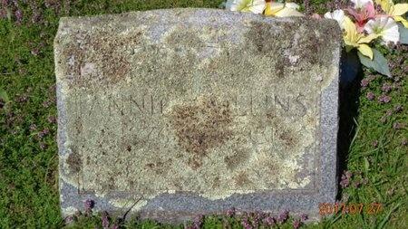 COLLINS, ANNIE - Marquette County, Michigan | ANNIE COLLINS - Michigan Gravestone Photos