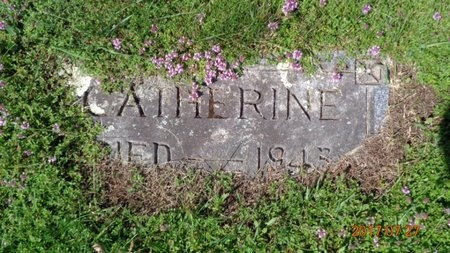 COLLINS, CATHERINE - Marquette County, Michigan | CATHERINE COLLINS - Michigan Gravestone Photos